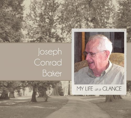 Life at a glance cover 2
